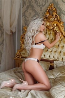 Harisa, sex in Belgium - 10079