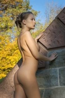 Sheva, sex in Belgium - 12554